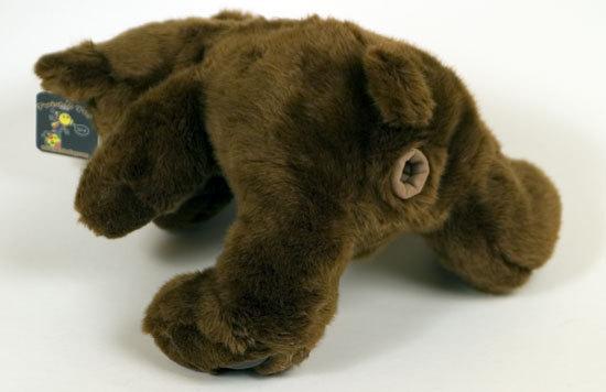 Teddy_bear_ass